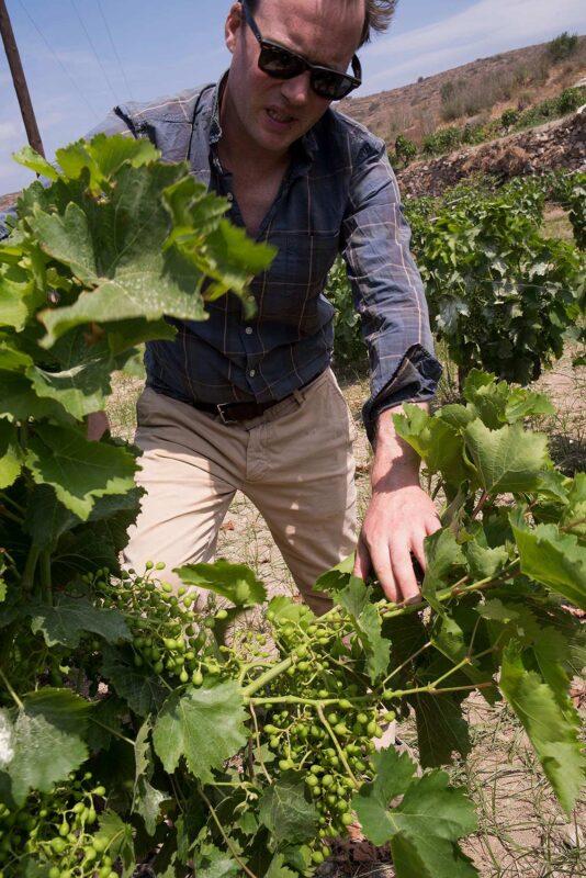 Edward Ousyra Winery